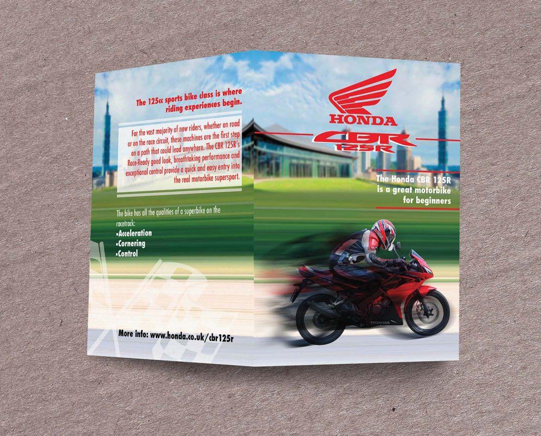 Maydell Perez – Brochure